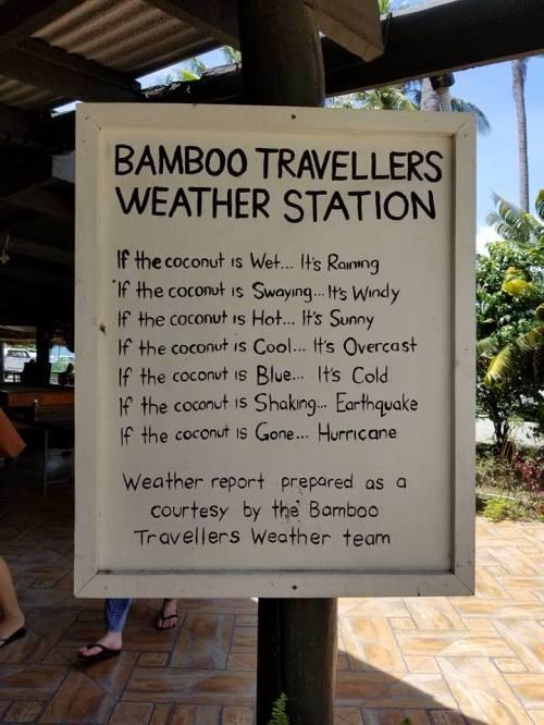 Bamboo Travelers Fiji