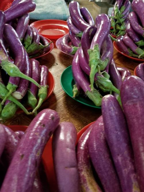 Eggplant Fiji